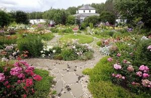 15 Цветочных спецэффектов, которые изменят ваш сад
