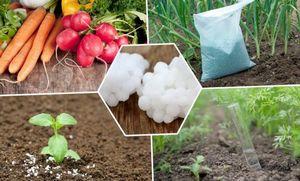 Азотные удобрения: применение, нормы внесения