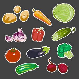 Бирки для маркировки растений: как выбрать и как сделать