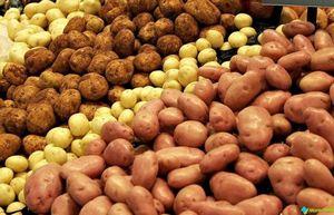 Целебные свойства картофеля