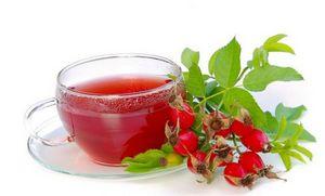 Чем полезны плоды шиповника, противопоказания и выращивание кустарника