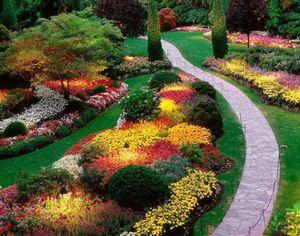 Цветущий сад на даче