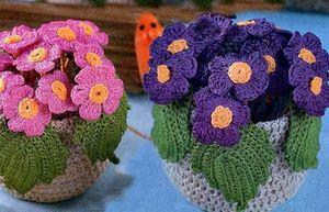 Цветы в горшках. видео