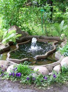 Дачные идеи. водный садик