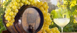 Домашнее белое сухое вино