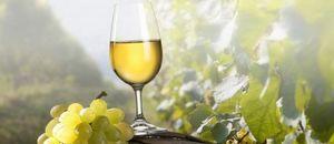 Домашнее красное сухое столовое вино, десертное вино.