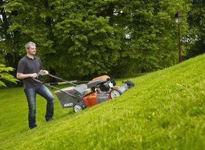 Газон на даче. как сделать подкормку газона