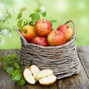 Готовим яблоки к хранению в зиму