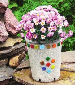 Идеи гармоничного сада: цветники и террасы круглой формы
