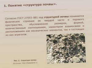Из чего состоит почва - классификация по составу и структура
