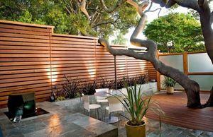 Как правильно посадить дерево?