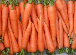 Как сажать морковь: рекомендации для получения превосходного урожая