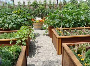 Как сделать легкий в обслуживании высокий огород