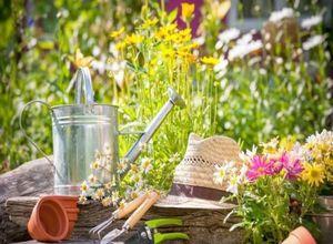 Какие удобрения нужны весной для огорода?