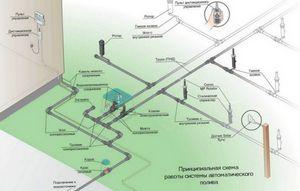 Капельный полив - универсальная система орошения