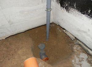 Картошка уходит в подполье