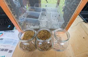 Корма для утки, полученные от переработки сельскохозяйственного сырья