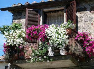 Красивое озеленение балконов, цветы на балконе