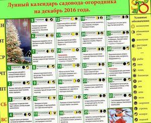 Лунный календарь огородника на декабрь 2015