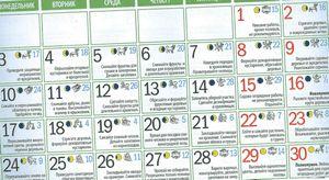 Лунный календарь огородника на сентябрь 2015