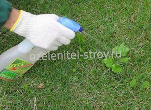 Мульчирование. утилизируем скошенную траву с пользой (компост).