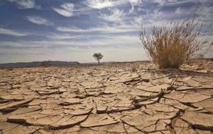 О засухе и суховеях