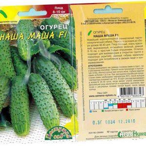 Огурец маша f1: описание сорта и особенности выращивания