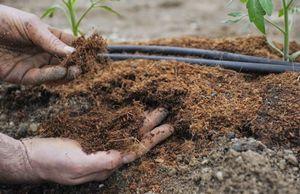 Почва и как её правильно удобрять.