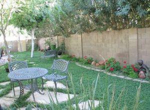 Почвопокровные растения - альтернатива газону