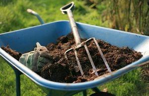 Подготовка почвы весной