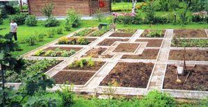 Полив огорода для ленивых