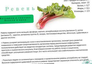 Ревень: полезные свойства овоща