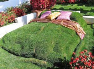 Рулонный газон как элемент садового ландшафта