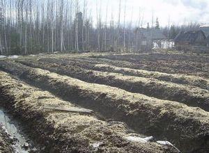С чего начать органическое земледелие? часть 3. виды грядок