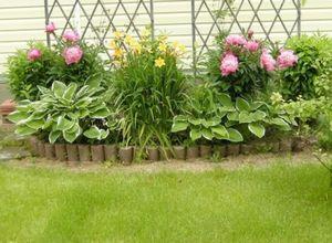 Садовые цветы-многолетники: выращивание и оформление цветника