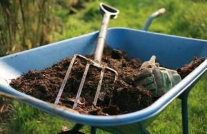 Садовый компост. главное, правильно его приготовить.