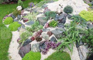 Сделаем сами дизайн садового участка быстро и без вложений