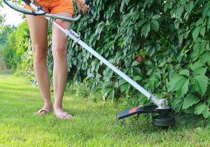 Секреты и правила стрижки газона