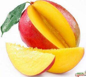 Секреты выращивания манго из косточки в домашних условиях