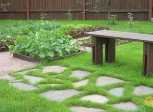 Смесь декоративного и деревенского стилей огорода