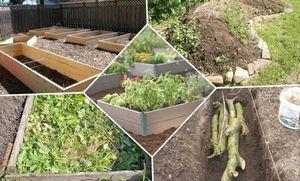 Советы огородникам: как сделать теплую грядку своими руками