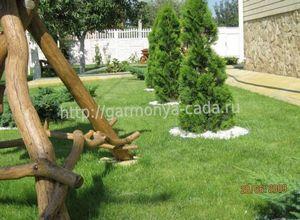 Тропинка для газона в саду