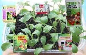 Удобрение энерген для стимуляции роста семян