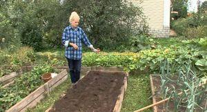 Уход за картофелем в огороде