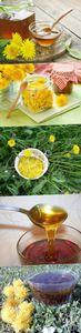 Варенье из одуванчиков - необыкновенно вкусно и полезно!