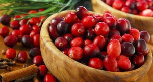 Витаминные заготовки на зиму из королевской ягоды – клюквы