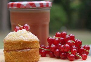 Заготовки на зиму из красной смородины: отличные рецепты